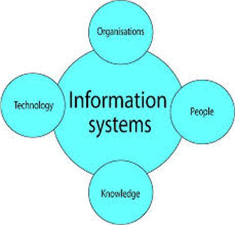 Introducing Financial Management Information Systems in