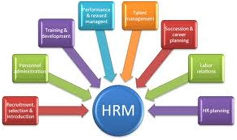Dissertation reports in hr - Custom Papers Fulfilled by